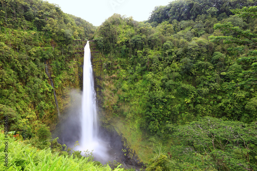 Poster Parc Naturel Waterfall - Akaka falls Hawaii