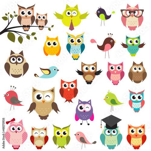 Photo Stands Owls cartoon set of owls
