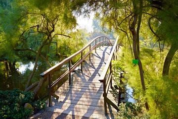 FototapetaJapanese bridge