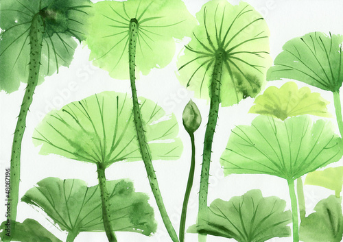 Foto op Aluminium Lotusbloem Watercolor painting of green lotus leaves