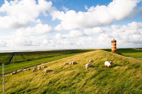 Tuinposter Noordzee Pilsumer Leuchtturm Krummhörn Nordsee