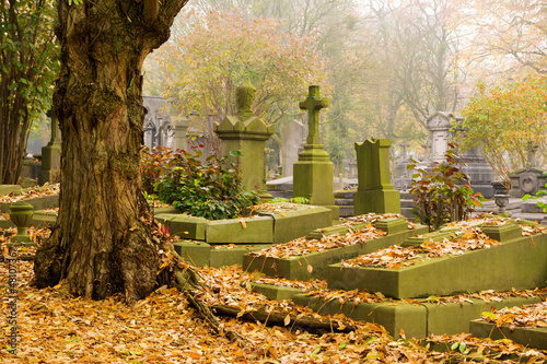Montage in der Fensternische Friedhof Autumn morning