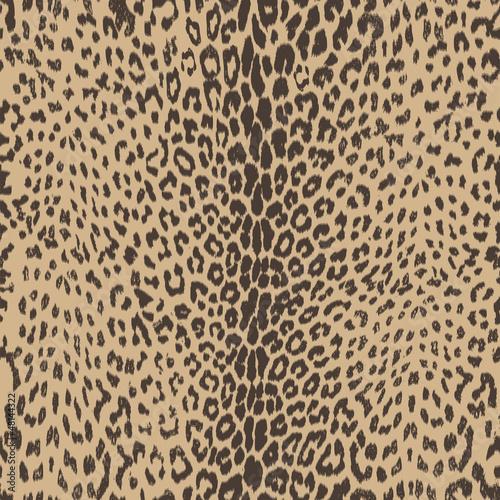 Photo  sexy leopard skin seamless background