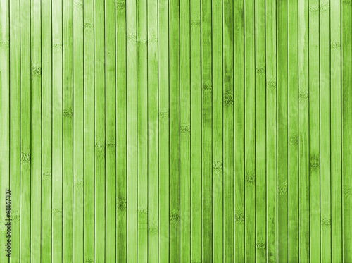 Plakaty zielone  bamboo