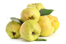 Sweet Quinces With Leaves, Iso...
