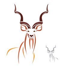 Vector Of Greater Kudu On White Background. Animals.