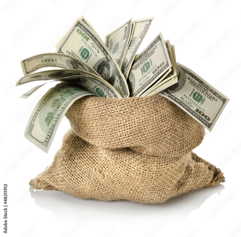 Fototapety, obrazy: Money in the bag