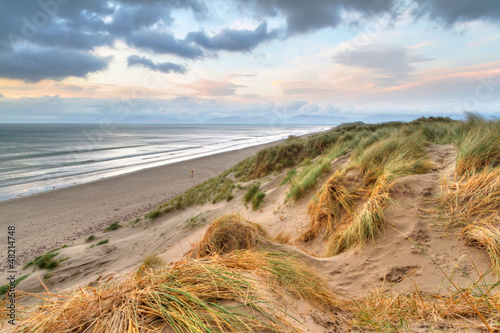 Spoed Foto op Canvas Noordzee Rossbeigh beach dunes at sunset, Ireland