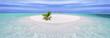 Leinwandbild Motiv Tropical island with palm