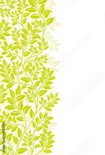 Foto  植物の背景