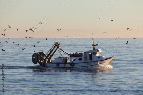 Papiers peints Peche Fishing boat returning to home harbor with lots of seagulls