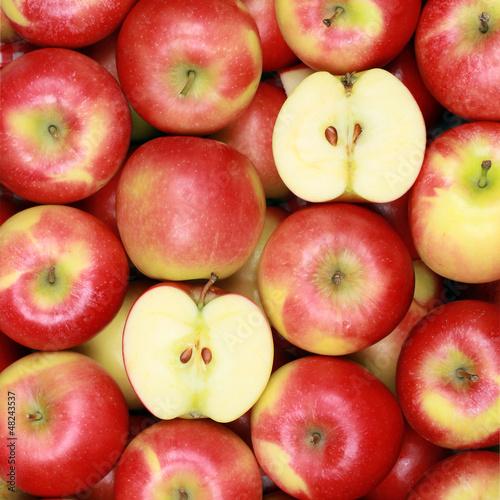 tlo-apple