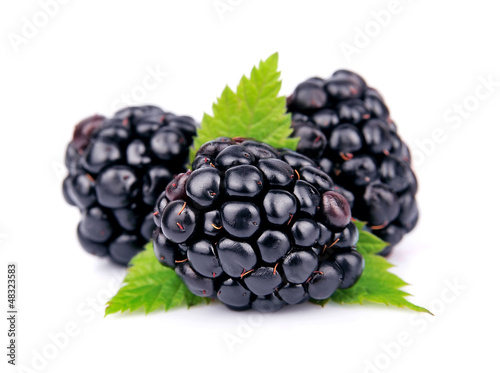 Blackberry fruit Slika na platnu