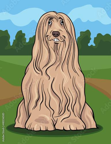 Poster Dogs bearded collie dog cartoon illustration
