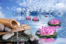 Spa Beauté Et Bien-être