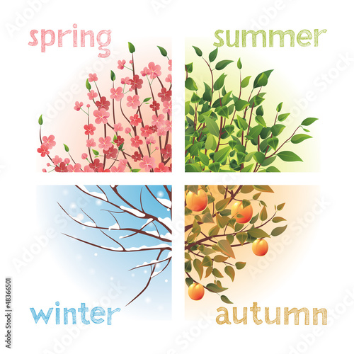 Láminas  seasons