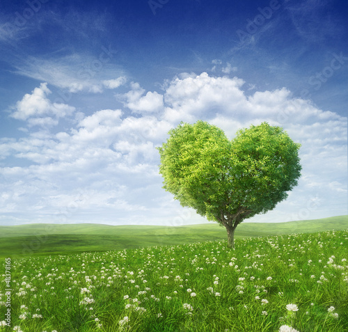 Staande foto Blauwe hemel Tree in the shape of heart, valentines day background,