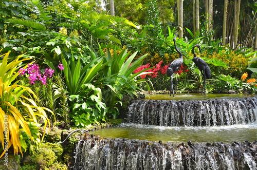 In de dag Singapore Singapore Botanic Gardens