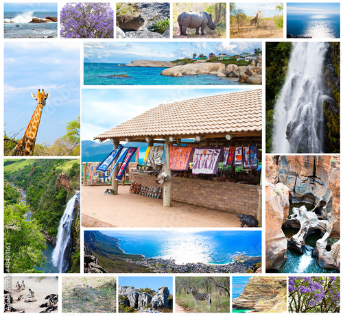 Deurstickers Zuid Afrika wild animals collage, fauna in South Africa, adventure, travel