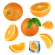 Oranges collection over white background