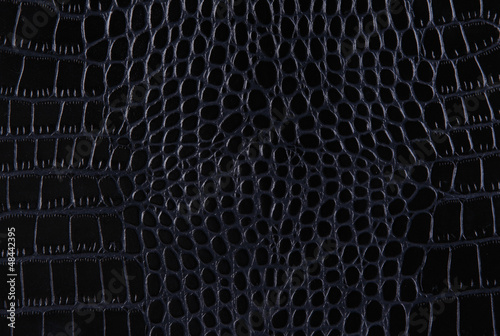 La pose en embrasure Crocodile Texture of a crocodile leather