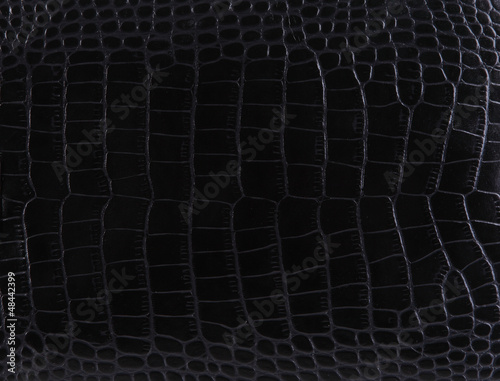 Crédence de cuisine en verre imprimé Crocodile Texture of a crocodile leather