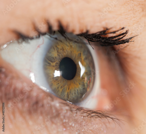 Türaufkleber Makrofotografie Macro image of human eye