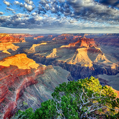 Fototapeta morning light at Grand Canyon