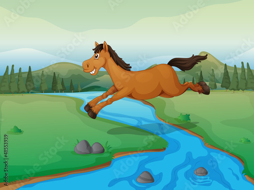 Wall Murals Ranch Horse crossing the river