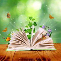 Fototapeta magic book