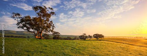 La pose en embrasure Australie Clare Field