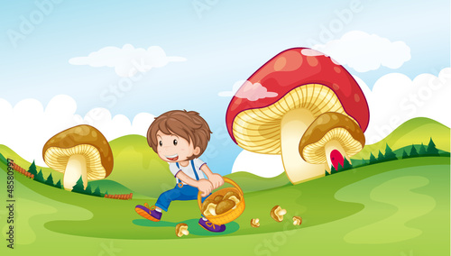 Cadres-photo bureau Monde magique A kid and the mushrooms