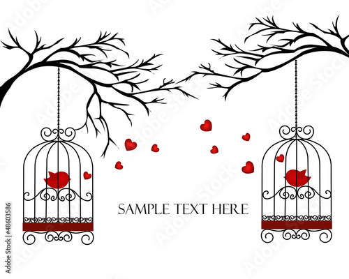 Acrylic Prints Birds in cages Two lovers birds in cages on the branches