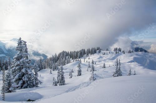 Winterlandschaft in den Bergen - 48606068