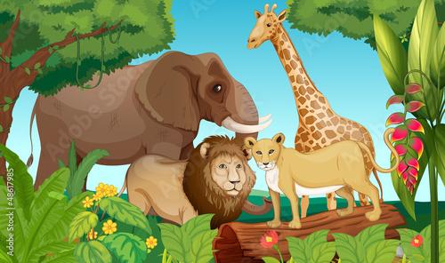Foto op Aluminium Zoo Animals in the jungle