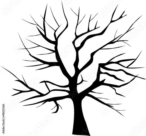 zima-sylwetka-drzewa