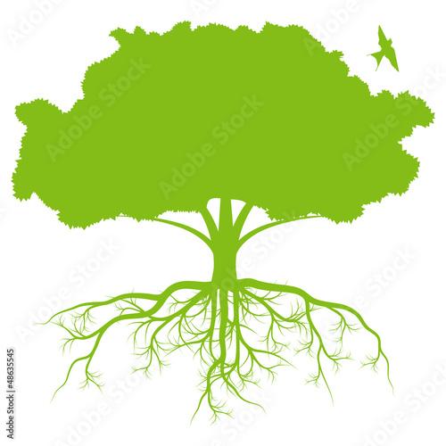 drzewo-z-korzenia-tla-ekologii-wektorem