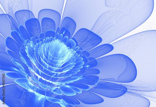niebieski-kwiat-streszczenie-kwiat