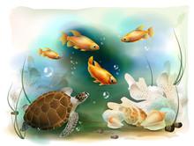 Illustration Of The Tropical U...