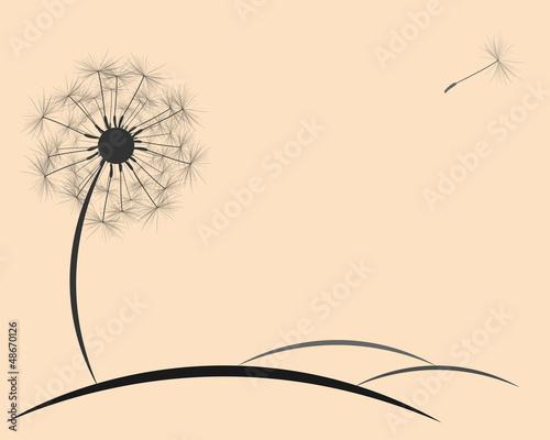 background dandelion fluff