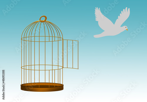 Poster Birds in cages Gilded cage escape concept, freedom metaphor