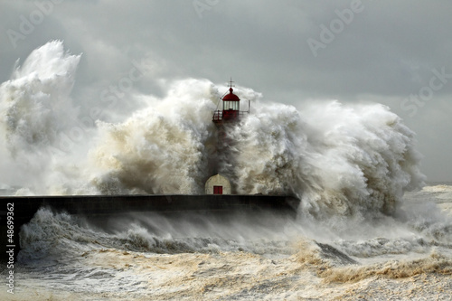 Photo sur Toile Taupe Windy Coast