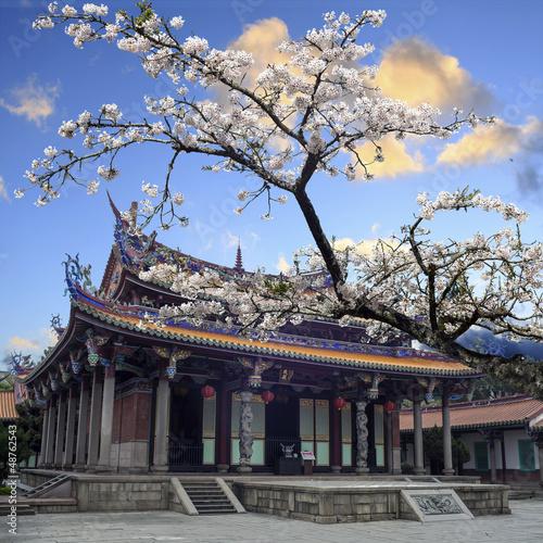 sakura-swiatynia-i-niebieskie-niebo