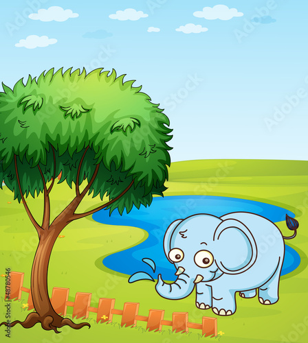 Wall Murals Cats An elephant playing in a water
