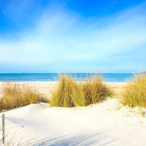 trawa-na-piaszczystych-wydmach-plazy-oceanie-i-niebie