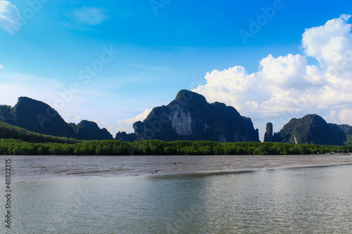 Foto op Aluminium Strand Mangrove swamp and mountains on river