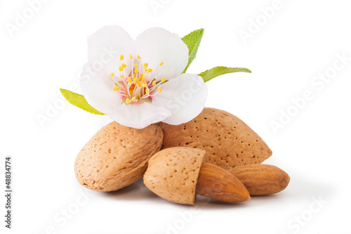 Almond with flower плакат