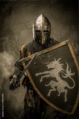 Medieval knight with sword and shield against stone wall Poster