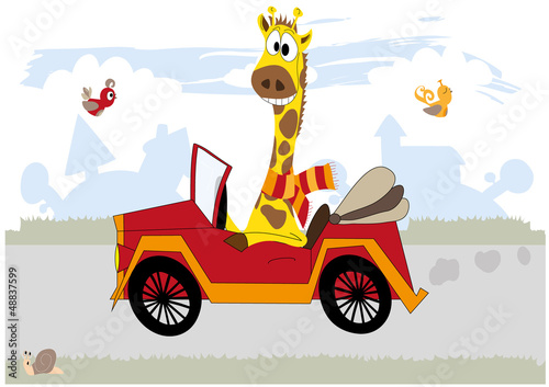 Happy giraffe in the car