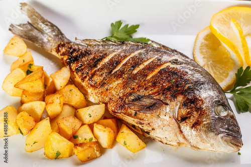 Tuinposter Vis Sea bream fish